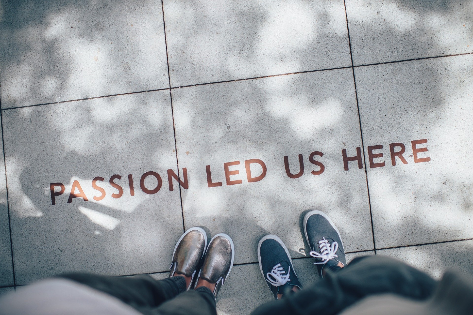 ¿Te dedicas a lo que te apasiona?